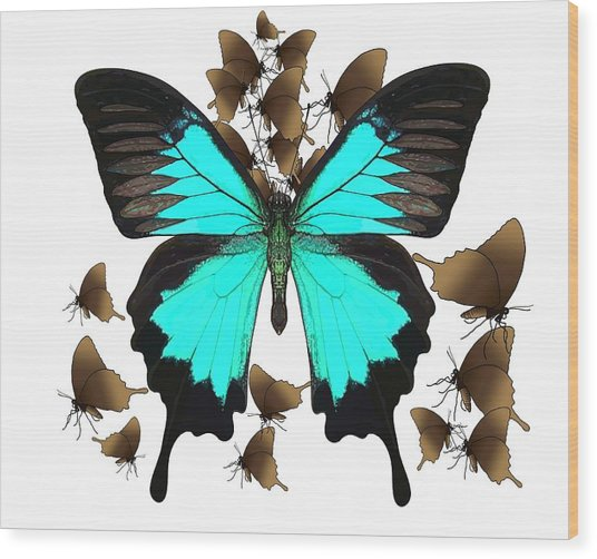 Ulysses Butterfly All A Flutter Wood Print
