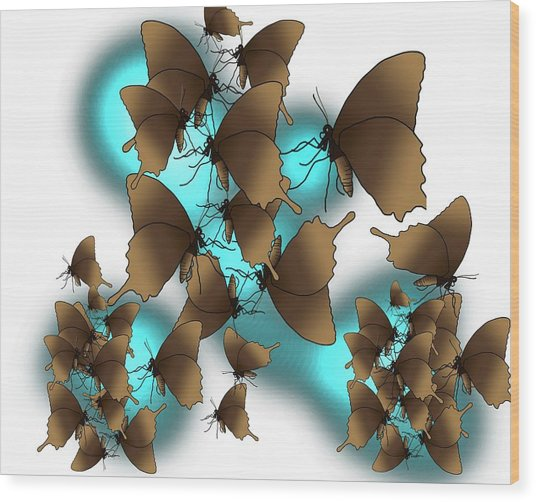Butterfly Patterns 9 Wood Print