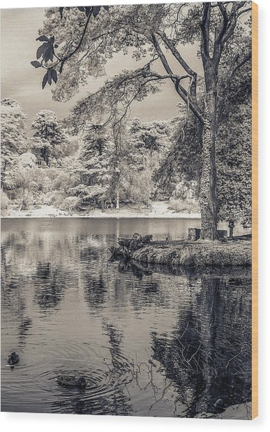 By The Lake Wood Print