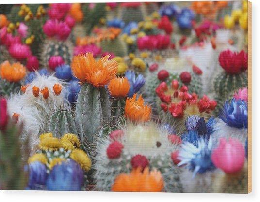 Cacti Flowers Wood Print