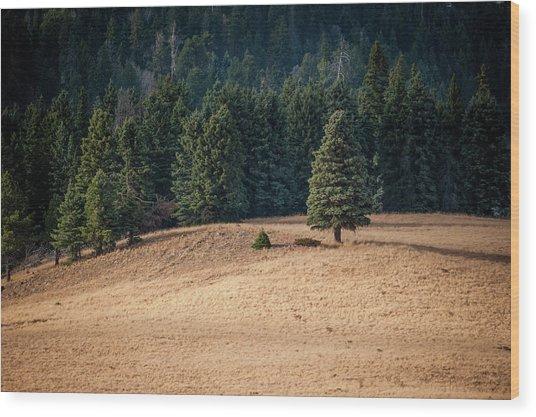 Caldera Edge Wood Print