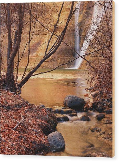 Calf Creek Falls 3 Wood Print by Leland D Howard