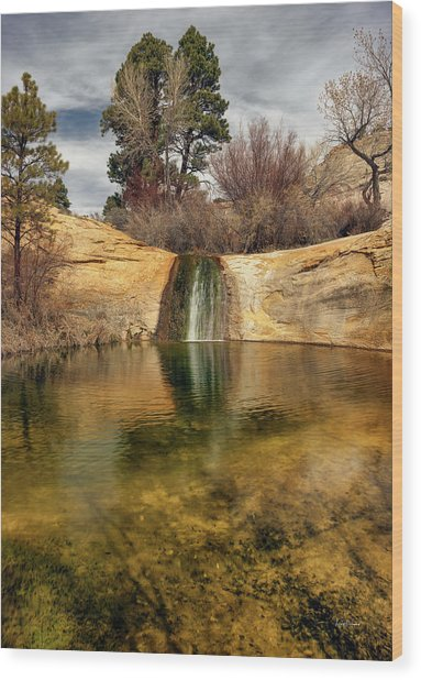 Calf Creek Pool Wood Print by Leland D Howard