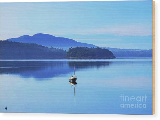 Wood Print featuring the photograph Calm Morning Cove by Patti Whitten