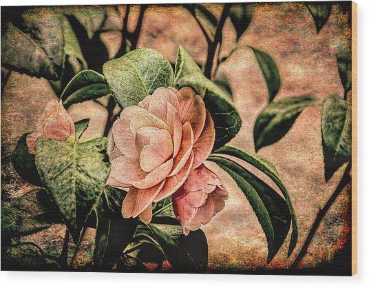 Camellia Grunge Wood Print