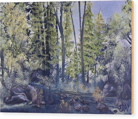 Camp Trail Wood Print