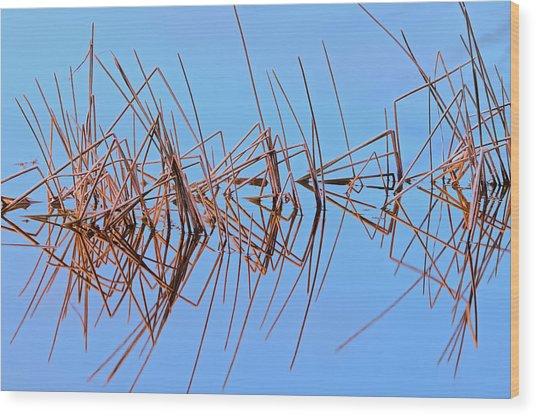 Canada, Alberta, Lawrence Lake Wood Print by Jaynes Gallery