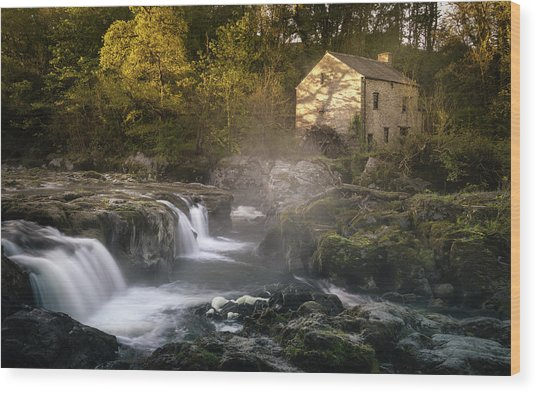 Wood Print featuring the photograph Cenarth Falls At Sunrise by Elliott Coleman