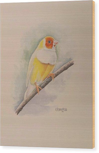 Canary Bird Wood Print