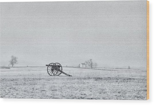 Cannon Out In The Field Wood Print