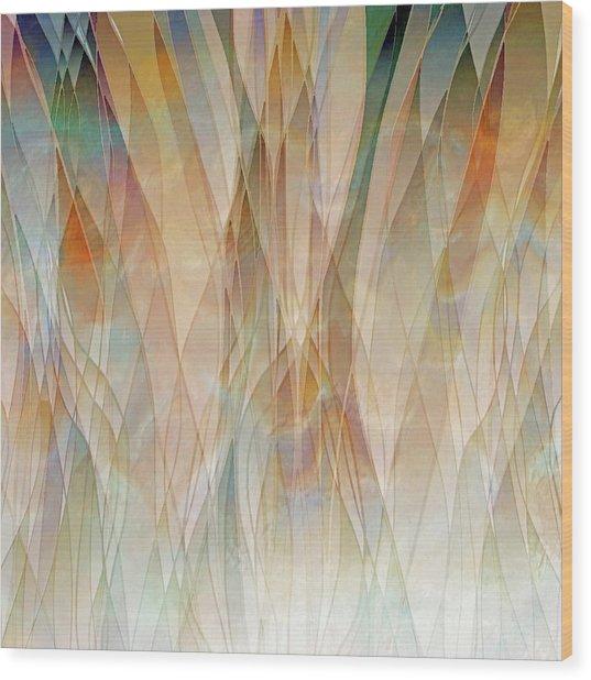 Canyon Falls  Wood Print