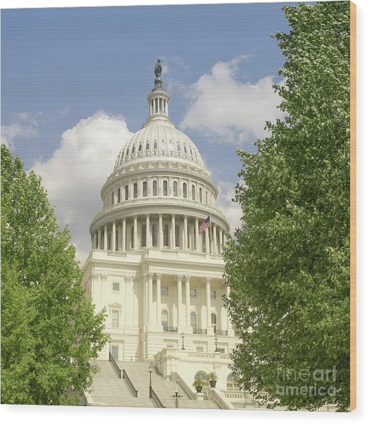 Capitol Building Washington Dc 2  Wood Print