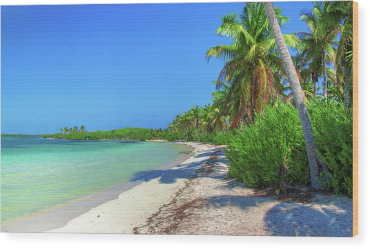 Caribbean Palm Beach Wood Print