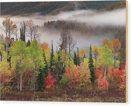 Caribou Canyon Wood Print by Leland D Howard