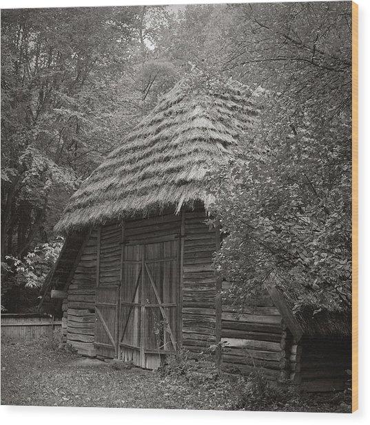 Carpathians Remote. Lviv, 2011. Wood Print