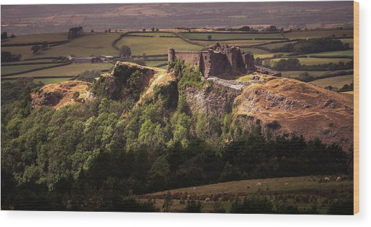 Wood Print featuring the photograph Carreg Cennen Castle by Elliott Coleman