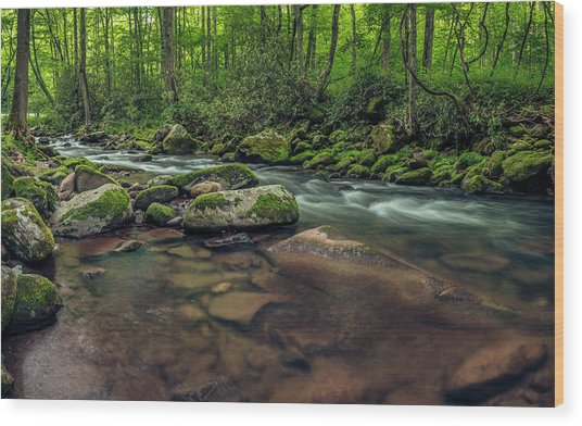 Cascades Of The Oconaluftee Wood Print