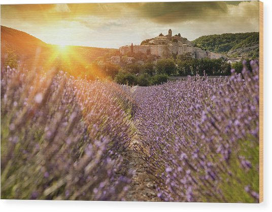 Castle Overlooking Field Of Flowers Wood Print by Cultura Rm Exclusive/walter Zerla