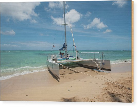 Catamaran On Waikiki Wood Print