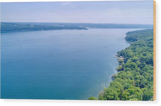 Cayuga From Above Wood Print