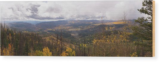 Cedar Mountain Top  Wood Print