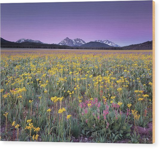 Central Idaho Color Wood Print by Leland D Howard