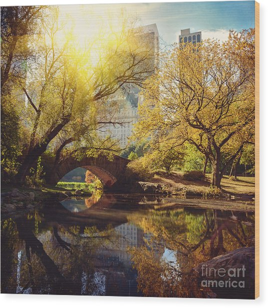 Central Park Pond And Bridge. New York Wood Print