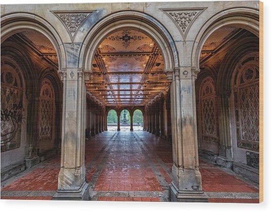 Central Parks Hidden Secret Wood Print by T-S Fine Art Landscape Photography