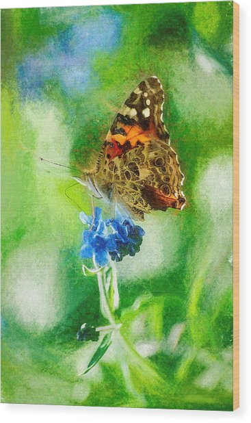 Chalky Painted Lady Butterfly Wood Print