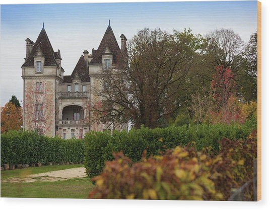Chateau, Near Beynac, France Wood Print