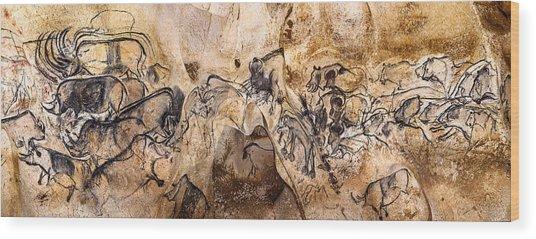 Chauvet Lions And Rhinos Wood Print