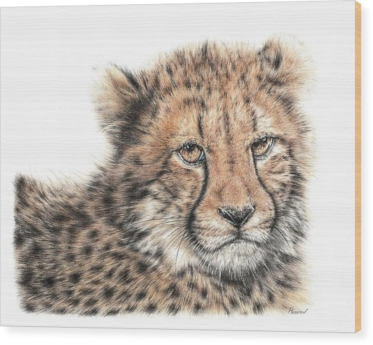 Cheetah Cub Wood Print