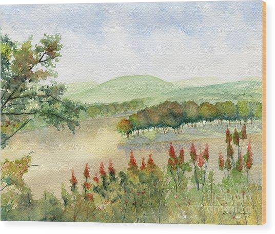 Chemung River Autumn Wood Print