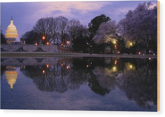 Cherry Blossom At Capitol Hill Wood Print by Patrick Yuen
