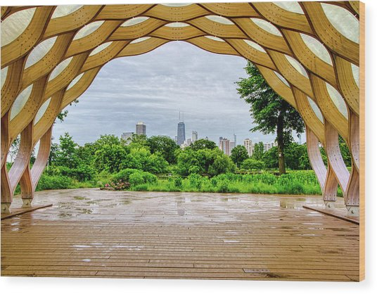 Chicago Skyline From South Pond Wood Print