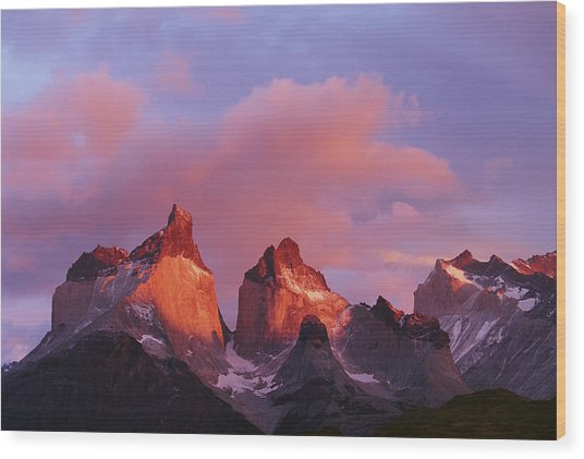 Chile, Torres Del Paine National Park Wood Print