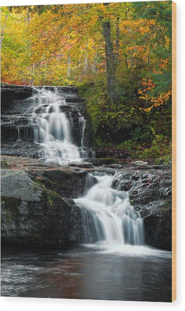 Choke Creek Falls Wood Print by Michael Gadomski