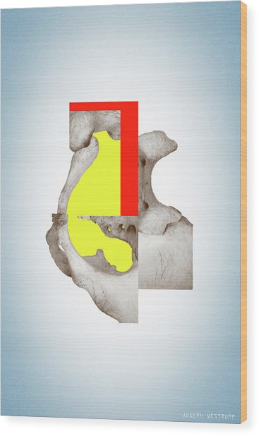 Cinerealism - Surreal Abstract Bone Collage And Geometry Wood Print