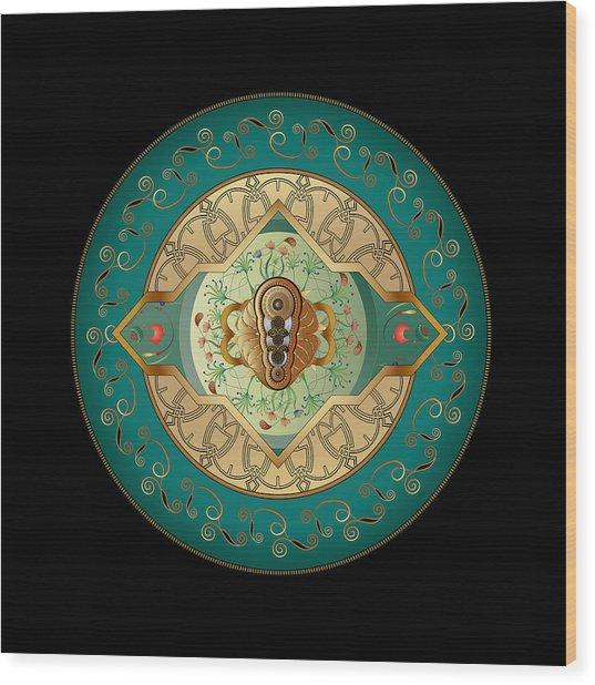 Circumplexical No 3838 Wood Print