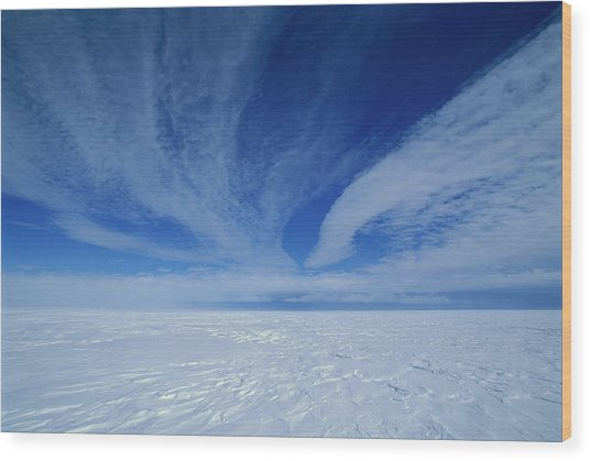 Cirrus Clouds Above Icy Plateau Wood Print by Grant Dixon/ Hedgehog House/ Minden Pictures