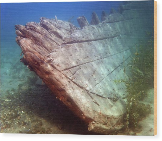 City Of Grand Rapids Shipwreck Ontario Canada 8081801c Wood Print