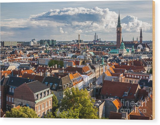 Cityscape Of Copenhagen From The Round Wood Print