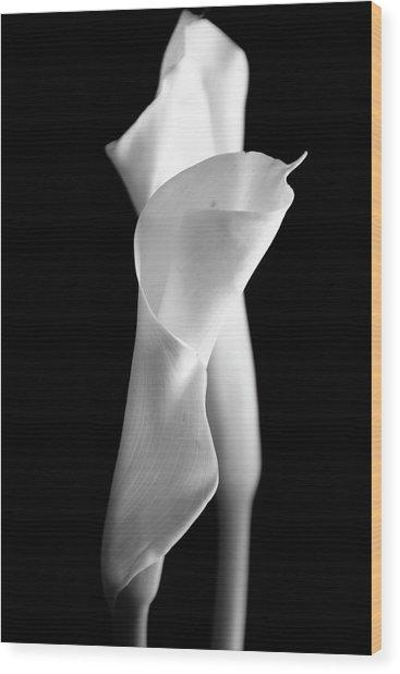 Classic Calla Lilies-bw Wood Print