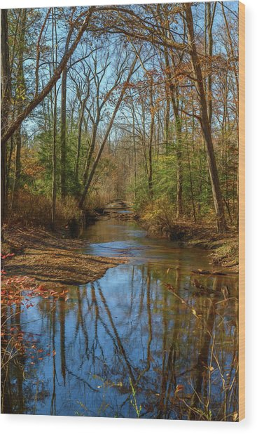 Wood Print featuring the photograph Clear Path by Cindy Lark Hartman