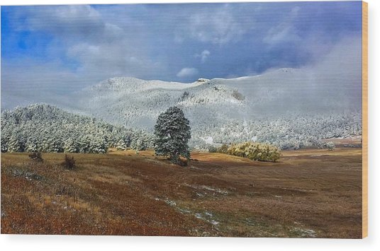 Wood Print featuring the photograph Clearing Storm by Dan Miller