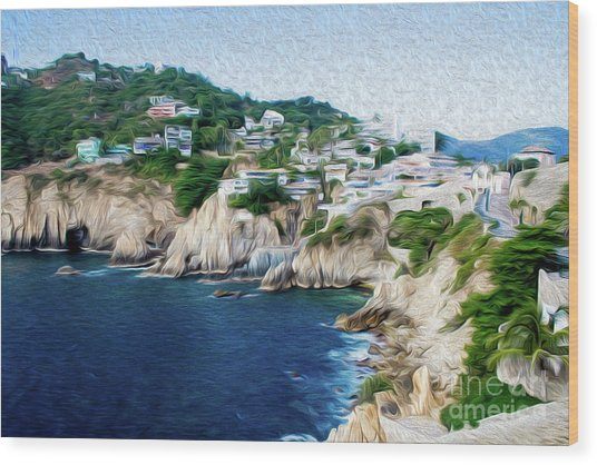 Cliffs In Acapulco Mexico I Wood Print