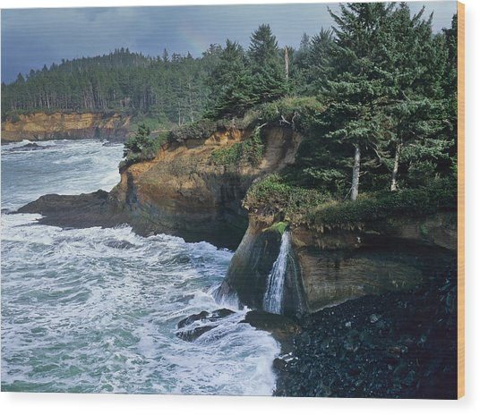 Cliffs Of Boiler Bay Wood Print