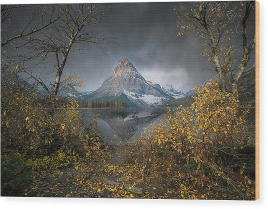 Clinging On / Late Fall / Two Medicine Lake, Glacier National Park  Wood Print