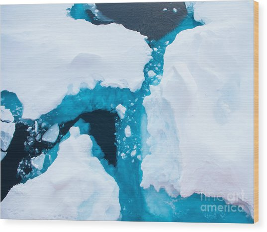Close Up Photo Of Beautiful Blue Ice In Wood Print