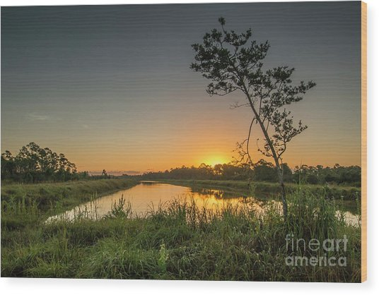 Cloudless Hungryland Sunrise Wood Print